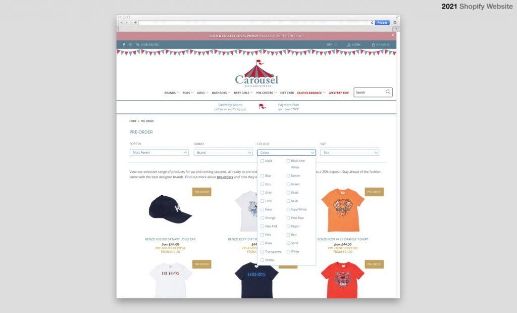 Shopify Website Designer